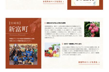「ANAのふるさと納税」特集記事に新富町が登場!
